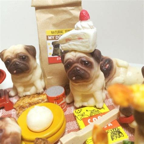 pug smells like corn chips 17 best images about pugs on outfitters pug and pug