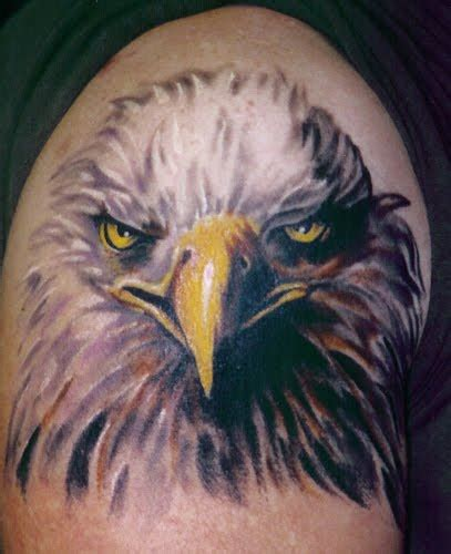 tattoo gallery eagle eagle head tattoos tattoo art gallery