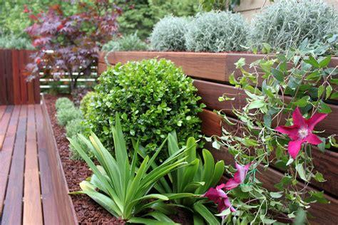 como decorar con plantas una terraza las 9 mejores plantas para terrazas la habitaci 243 n verde