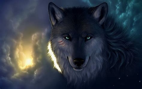 computer wallpaper wolf wolf wallpapers best wallpapers