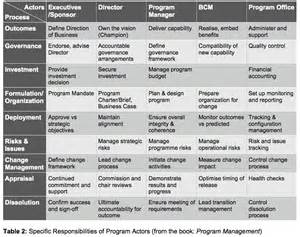 Roles And Responsibilities Of A Program Manager by The Program Management Actors Project Manager