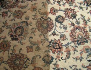 moosavi rugs how to clean or shoo and area rugs and carpets
