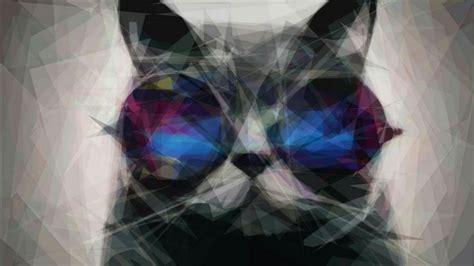 cat  sunglasses hd wallpaper wallpaper studio  tens  thousands hd  ultrahd
