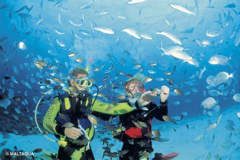 the dive maltaqua scuba diving lessons malta