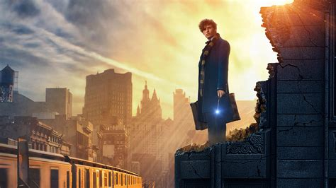 fantastic beasts and where to find them 2016 fantastic beasts and where to find them hd 4k wallpapers