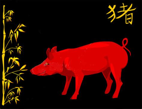 new year of the golden pig astrology year of the pig prowl in world