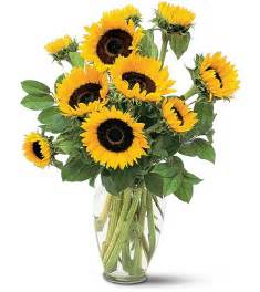 Sunflower In A Vase San Diego Wholesale Flowers Florist Amp Bouquets Sunflowers