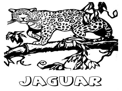 coloring pages jaguar animal jaguar animal coloring pages realistic coloring pages