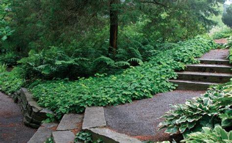 designing a garden 15 tips for designing a garden gardening