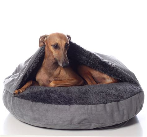comfy dog beds comfy dog bed woof doggy dogg dog beds and costumes