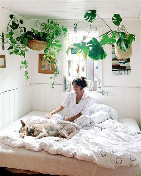 garden bedroom best 25 garden bedroom ideas on pinterest diy bedroom