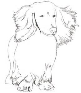 dachshund coloring pages miniature dachshund coloring pages difficult coloring pages