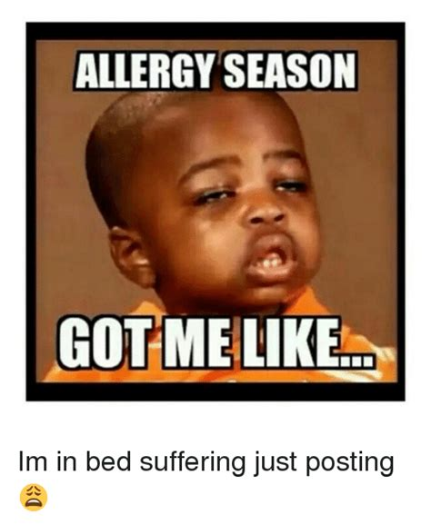 Allergy Meme - 25 best memes about allergy season got me like allergy