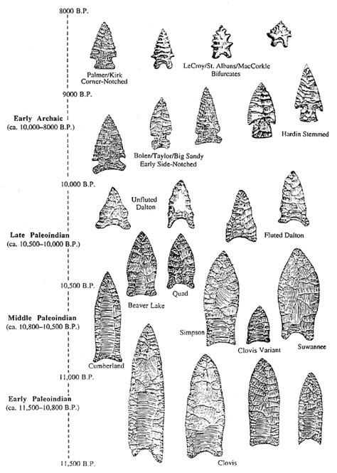 different virgina styles different types of projectile points from the paleo