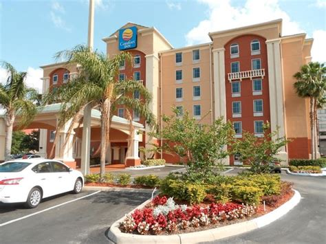 comfort inn international drive comfort inn international drive picture of comfort inn