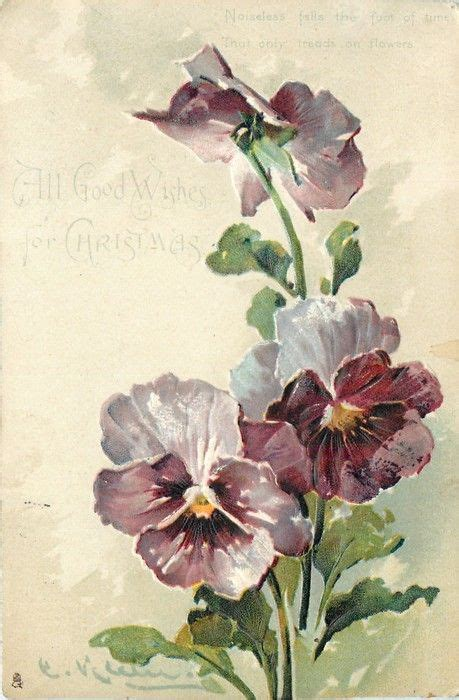 En Catherine Flower 3 light purple pansies by catherine klein 1904 flower