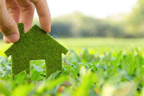 when can you take a puppy home 14 easy steps you can take today to go green with your ultimate home