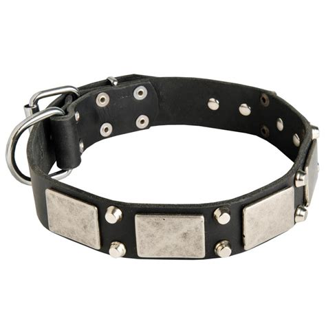 rottweiler collar vintage leather collar with nickel plates and cones for rottweiler rottweiler