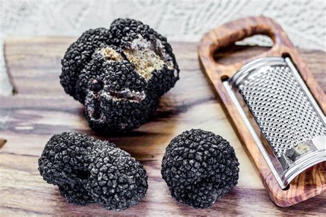 how to your to hunt truffles where to go truffle in britain luggage only travel food