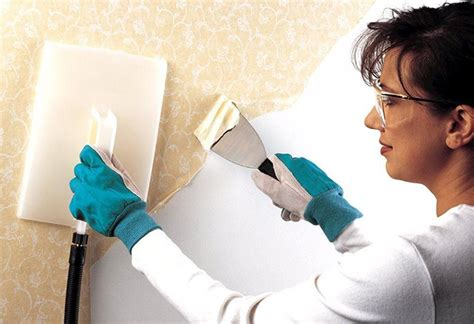 computer wallpaper removal wallpaper removers liquid and gel removers steamers