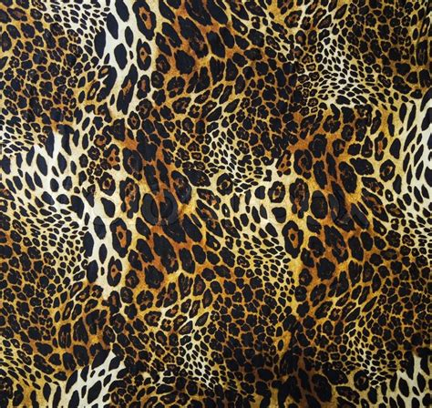 leopard print texture pattern by happycer4027 leopard skin seamless background stock photo colourbox