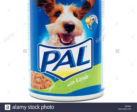 puppy pal pal food stock photo royalty free image 18512667 alamy
