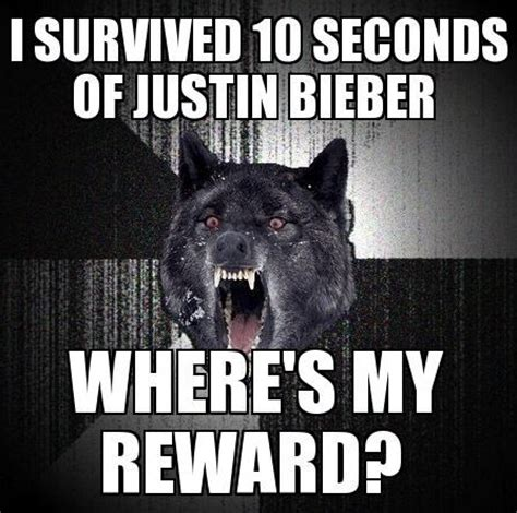 Insanely Funny Memes - insanely wolf memes insanity wolf meme humor pinterest