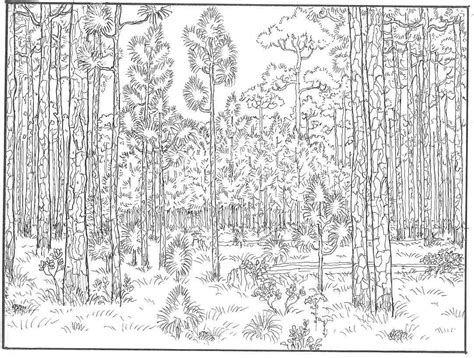 detailed landscape coloring pages for adults landscape coloring pages coloringsuite com