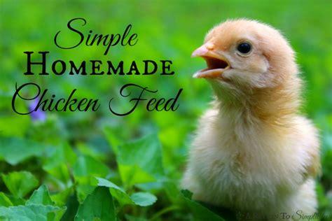 As Tahu Untuk Pakan Ternak Ayam peluang usaha ternak ayam petelur omset 30juta analisa
