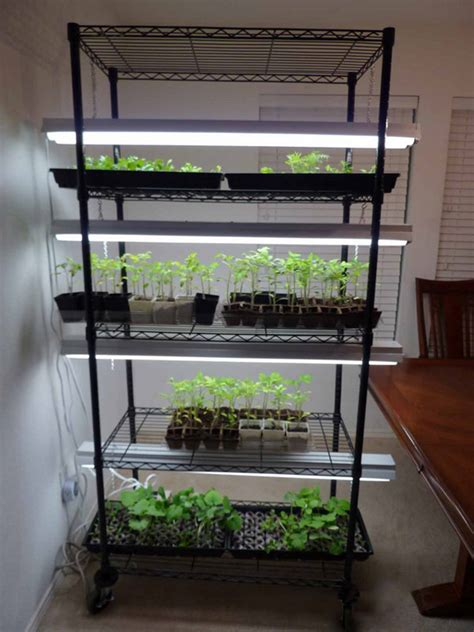 china indoor microgreen growing hydroponic system high