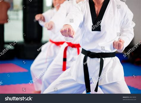training women in the martial arts a special journey ebook people gym martial arts training exercising stock photo