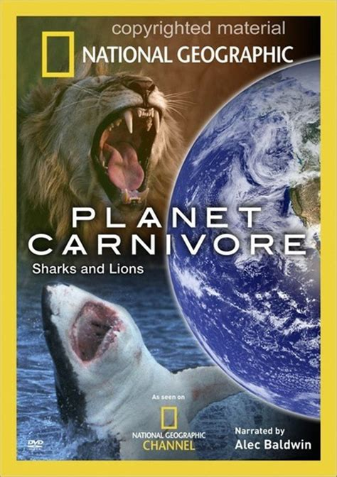 lion film national geographic national geographic planet carnivore sharks lions