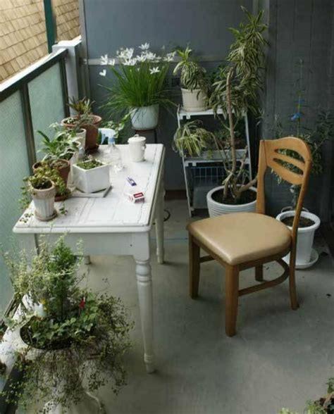 kleine kräutergarten design design balkon wand
