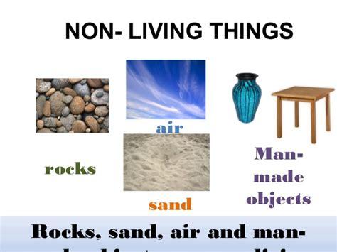 living things non living things non living organisms