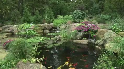 beautiful backyard ponds 211 best images about pond ideas on pinterest pond pumps