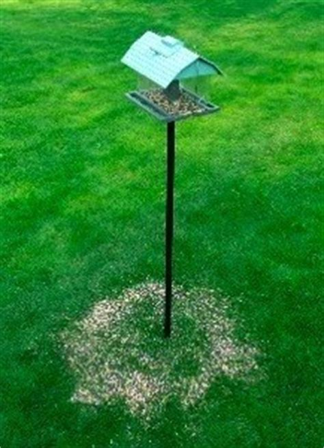 new 16 quot seedhoop seed catcher platform bird feeder