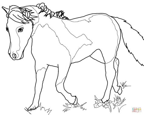 Miniature Horse Coloring Page | miniature horse coloring pages