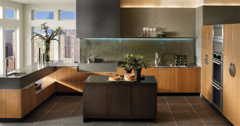Linear Solutions   Contemporary Kitchen Cabinets   Wood Mode