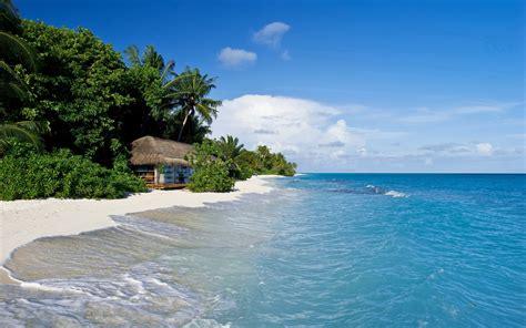 hutte tropicale hintergrundbilder 2560x1600 malediven tropisch