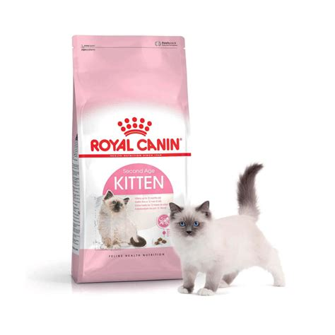 royal canin kitten royal canin kitten pour chaton jusqu 224 un an croquette chat
