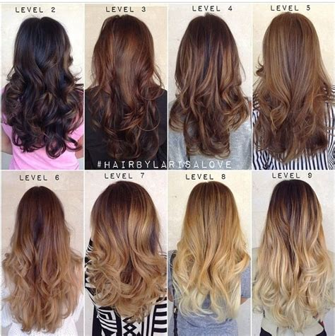 level 6 hair color 41 best images about color levels 1 10 on