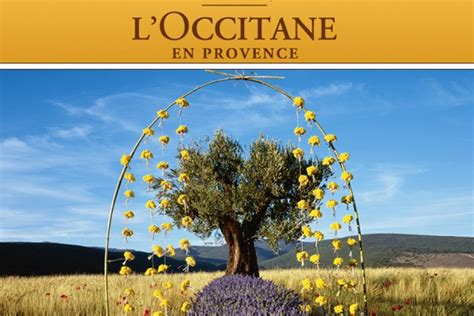 l occitane en provence svoboda williams