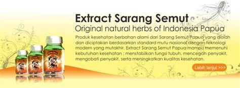 Obat Herbal Sarang Semut obat herbal ambeien