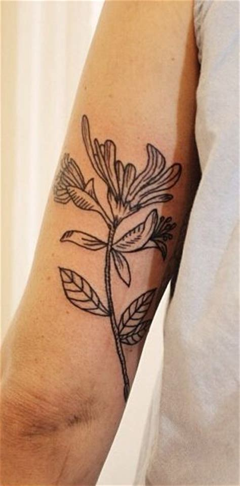 honeysuckle tattoo designs 25 best ideas about honeysuckle on