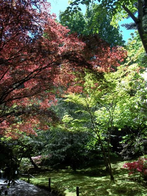 17 Best Images About America S Gardens On Pinterest Botanical Gardens Seattle