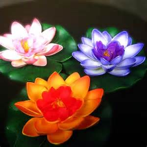 Lotus Flower Small Combo Of 5 Beautiful Lotus Flowers Small Shopping