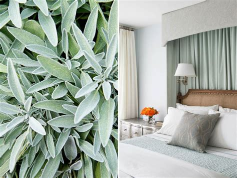 sage green home decor 15 ways to decorate with soft sage green hgtv