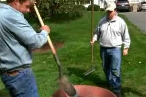 how to house a stubborn how to remove crabgrass