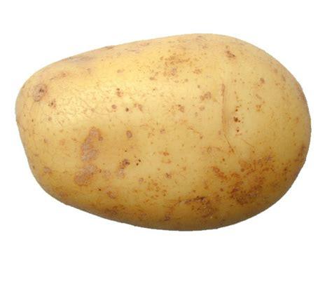 who is a potato leonabanana