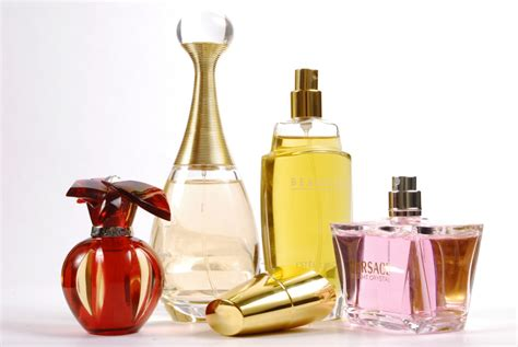 Perfume In by Perfumes Effects On Humans Greenarea Me